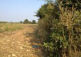 ขายด่วนที่ดิน สีคิ้ว บ้านหัน 29 ไร่ เหมาะทำโรงงาน - DDproperty.com