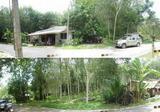 ขายบ้านพักอาศัย 5 หลัง - สงขลา เทพา ID: 02-88-02865v - DDproperty.com