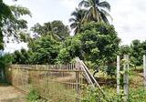 ขายที่ดินสวนลำใย 2 ไร่ ใกล้อำเภอจอมทอง แม่น้ำปิง ราคาถูก - DDproperty.com