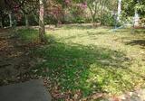 บ้านเดี่ยวให้เช่า พื้นที่ 1 ไร่ สุขุมวิท ซอย 39 - DDproperty.com