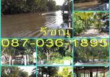 ที่ดิน ริมน้ำ 2-3-52 ไร่ ห่างตลาดน้ำอัมพวานิดเดียว  อากาศในสวน ริมน้ำ คลองใหญ่ น่าลงทุน - DDproperty.com