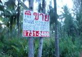 ขายที่ดิน 3-2-85 ไร่ ต.ท่าคา อ.อัมพวา จ.สมุทรสงคราม - DDproperty.com