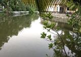 ขายบ้านเดี่ยวขาดทุน โครงการลิฟวิ่ง ลากูน (พระยาสุเรนทร์ 39) หลังบ้านติดน้ำ - DDproperty.com