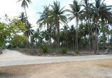 ขายที่ดิน ริมชายหาด สิชล - DDproperty.com