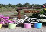 ขายบ้านทรงไทยประยุกต์พร้อมที่ดินทำสวนผสม - DDproperty.com