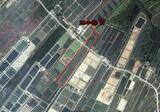 ขายที่ดิน 21-0-20 ไร่ ที่บ่อกุ้ง ต.หนองชิ่ม อ.แหลมสิงห์ จันทบุรีคับ - DDproperty.com