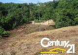 Flat Land Near Big Buddha - DDproperty.com