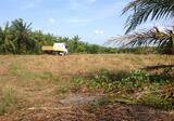 """""""Land Rental Area of not less than 40 acres in the town of Krabi. - DDproperty.com"""