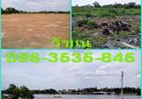 ที่ดิน 16.5 ไร่ ริมแม่น้ำแม่กลอง คนละฝั่ง(เยื้อง) กับตลาดน้ำอัมพวา ที่สวยมาก วิวดี กำลังถม - DDproperty.com