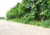 Land in Pak Khat, Nong Khai - DDproperty.com