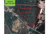 ขายที่ดิน 53 ไร่ ถนน3241 หุบบอน-สวนเสือศรีราชา ที่สวย ทำเลดี - DDproperty.com