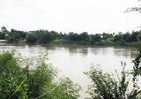 ขายที่สวยริมแม่น้ำแม่กลอง 1 ไร่ อำเภอบ้านโป่ง ราชบุรี 1.5 ล้านบาท - DDproperty.com
