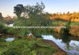 ที่่ดินโฉนดติดแม่น้ำปิงตลอดแนวและโฉนดบนเนินดอย - DDproperty.com