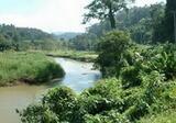 ขายที่ดิน แบ่งขายที่ดิน เชียงใหม่ ติดแม่น้ำ  ติดถนน ถูกหลักฮวงจุ้ย - DDproperty.com