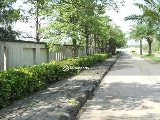 ภูมิบุรี ถนนทางเข้า หมู่บ้าน 3593678