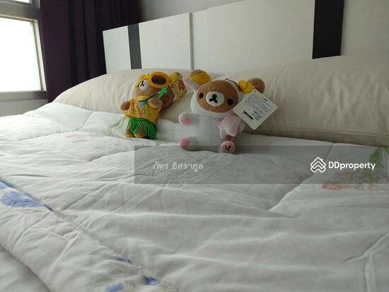 1 Bedroom Condo in ,   65124312