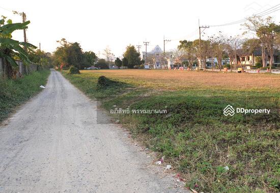 ที่ดิน 57 ไร่ แบ่งขายได้ ติดถนนเชียงใหม่-หางดง (4 แยกหางดง-สะเมิง)  66289991
