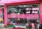 เซ้งตึกแถวทำเลทอง หน้าม.เชียงใหม่ พร้อมทำธุรกิจ - DDproperty.com