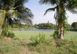 ขายที่ดินเปล่า 100 ตรว. ใกล้ถนนใหญ่ จ.ราชบุรี - DDproperty.com
