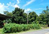 ขายสวนผลไม้ ใกล้น้ำตกตรอกนอง จันทบุรี - DDproperty.com
