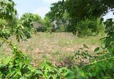 ขายที่ดินสกลนคร บ้านมะขามป้อม ที่ติดถนนลาดยาง ทางเข้าปมู่บ้านโอยธิน - DDproperty.com
